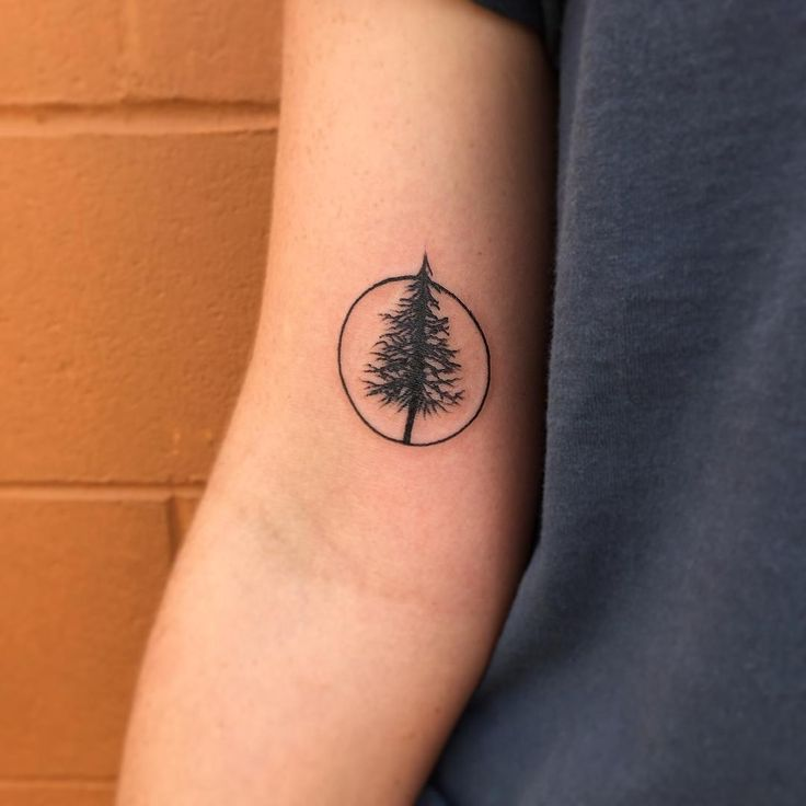 simple tree tattoos