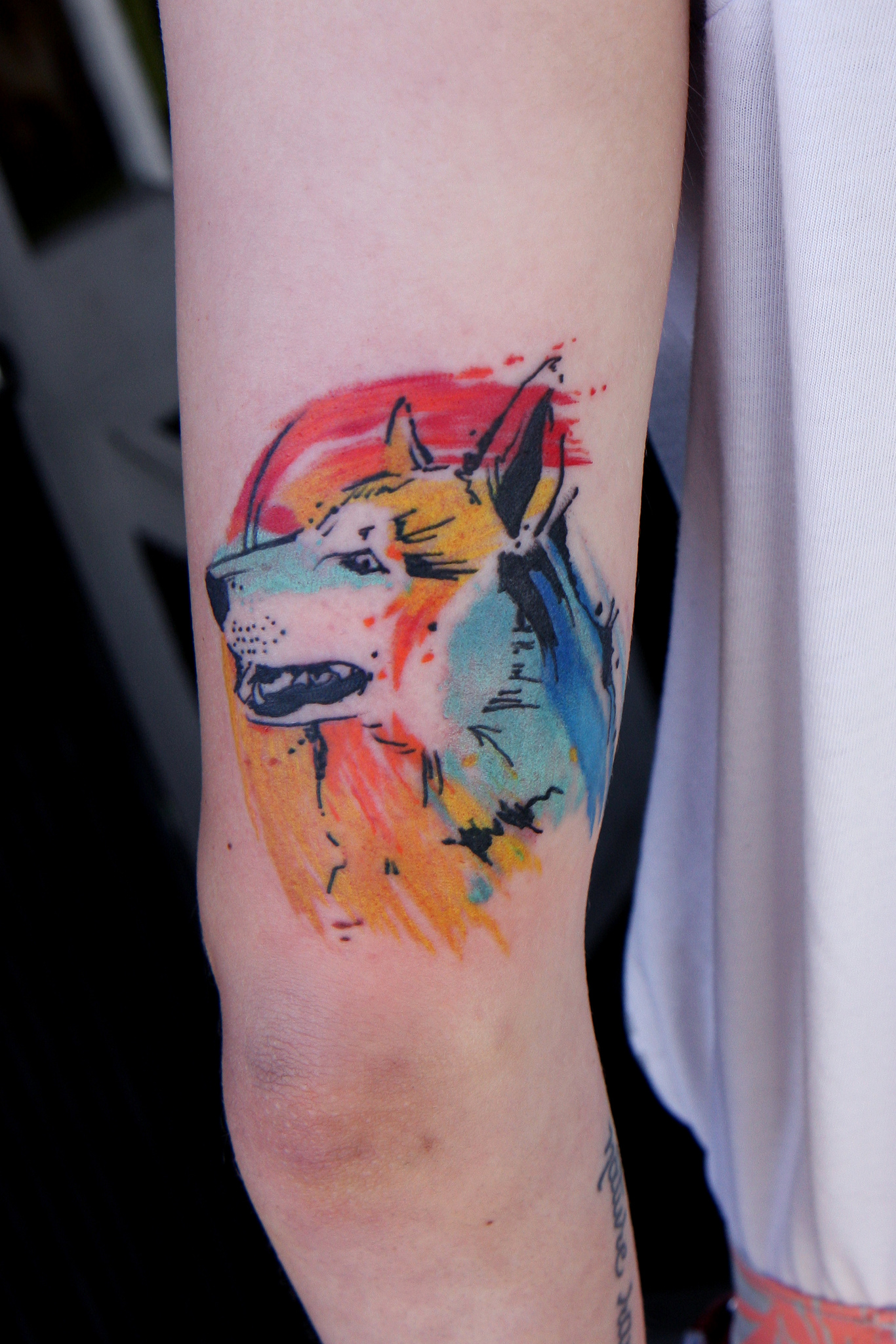 watercolor tattoos dog