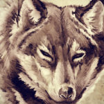 73 Amazing Wolf Tattoo Designs